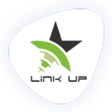 linkup networks logo